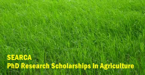 searca phd agricultural research scholarships for southeast asian
